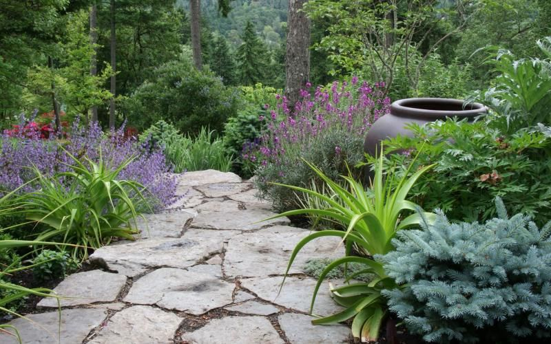 17 Best Images About Pacific Nw Gardening On Pinterest Gardens