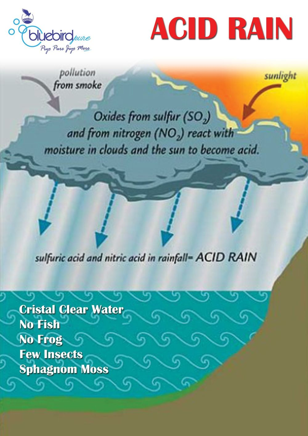 medium resolution of acid rain easy diagram wiring diagram autovehicle acid rain easy diagram