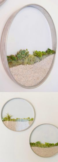 Circular Framed Planters Add Living Art to Your Walls ...