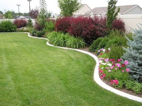 landscaping in curved bed