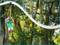 diy zipline | HomeBuildDesigns | Pinterest | Diy zipline ...