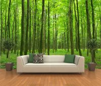 Peel and stick photo wall mural, decor wallpapers forest ...