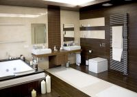 Modern Bathroom Design Ideas Trends 2014 With Bathtub And ...