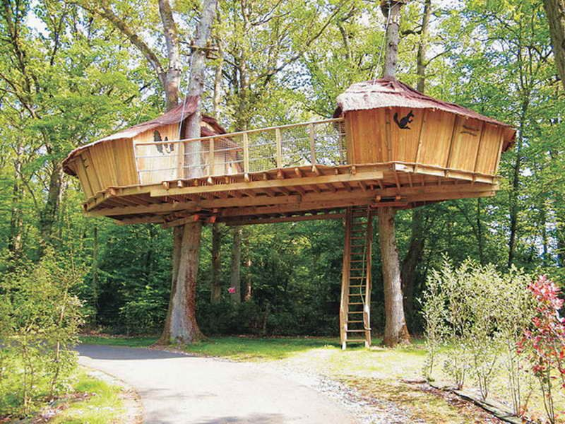 Outdoor Awesome Treehouse Plans And Designs Beautiful Treehouse