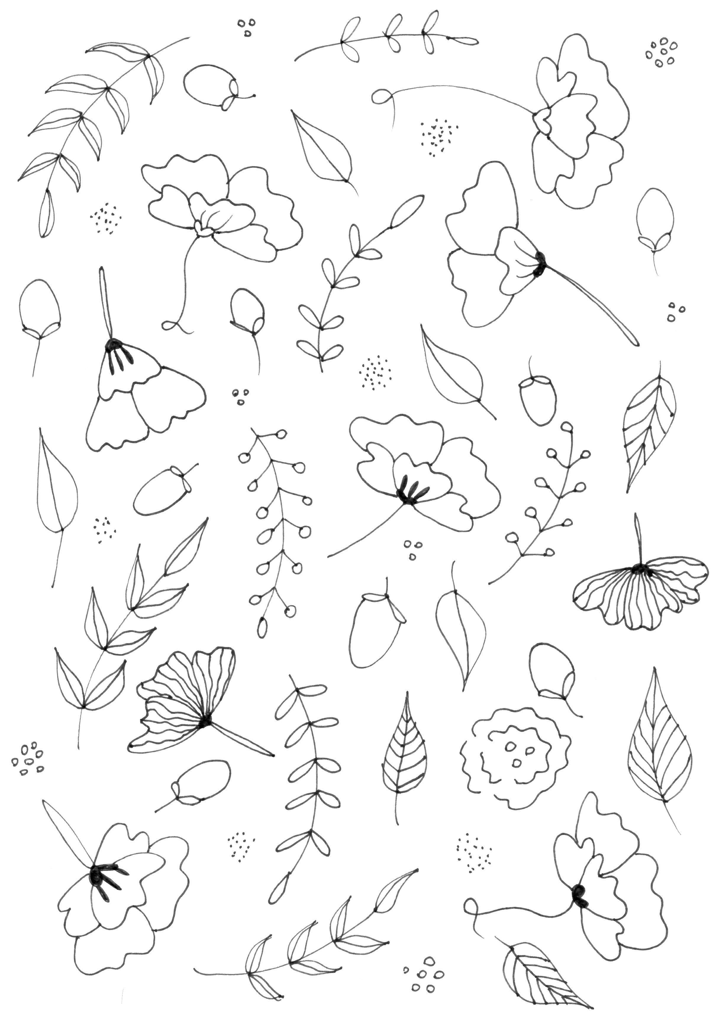 botanical line drawing practice and pattern skillshare