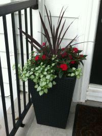 Planter idea for front door | Garden ideas | Pinterest