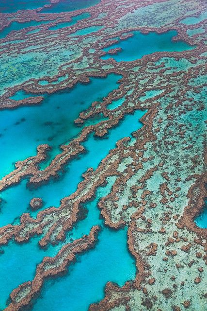 Great Barrier Reef – Queensland