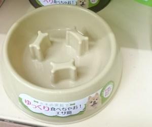 猫食器100円