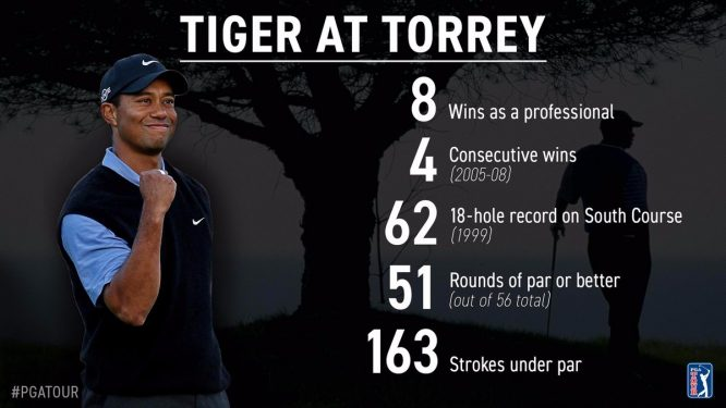tiger stats
