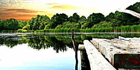 lake_pic.jpg