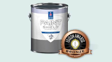 Paint Shield with it's bronze 2017 Edison Award