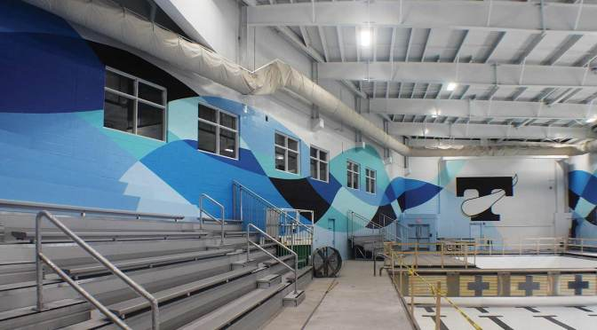 Cool Pool: A Colorful Pro Industrial™ Paint Job in Tennessee