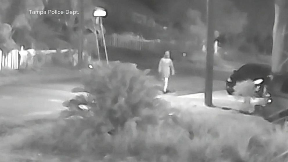 Manhunt grows for suspected Florida serial killer Video - ABC News