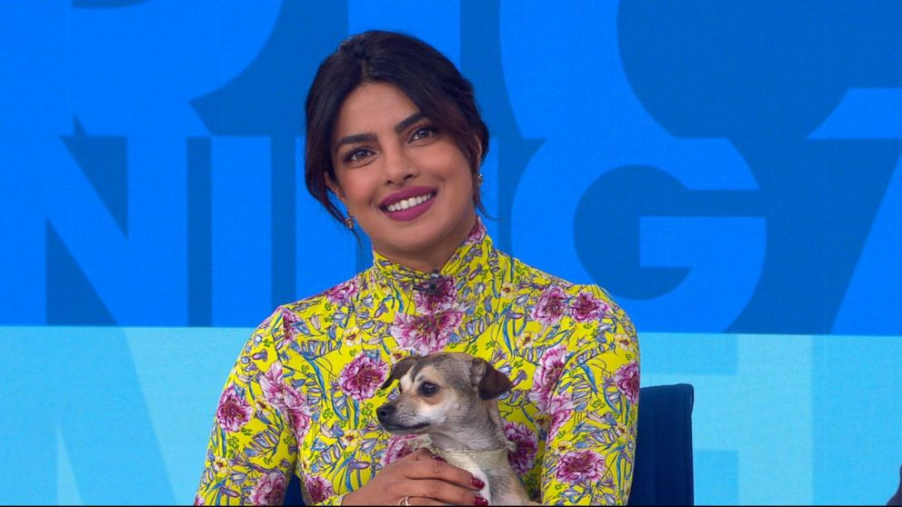 Image Result For Priyanka Chopra Struggling To Find A Wedding Gift For Meghan Markle Entertainment News