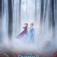 5 Pros & Cons of Disney's Frozen 2 (2019)