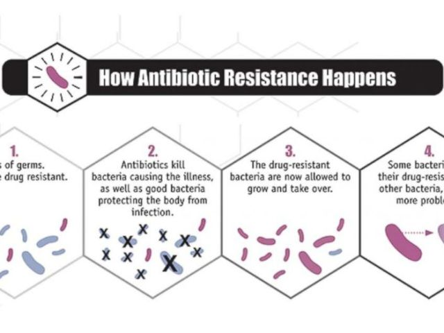 GRAPHIC: A graphic from the CDC shows how antibiotic resistance happens.