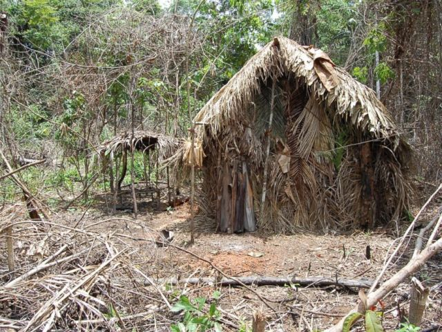 PHOTO: A straw house known as maloca, which was built by the sole survivor of an Amazonian tribe, according to FUNAI, a Brazilian government agency that protects the interests of natives.
