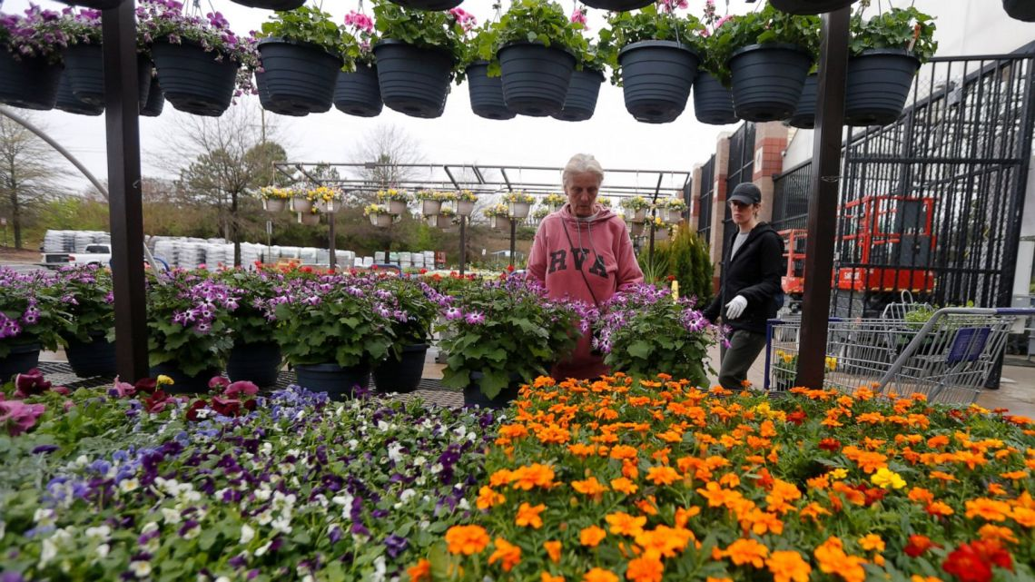 Feed The Soul In Chaotic Times Gardening Becomes Therapy Abc News