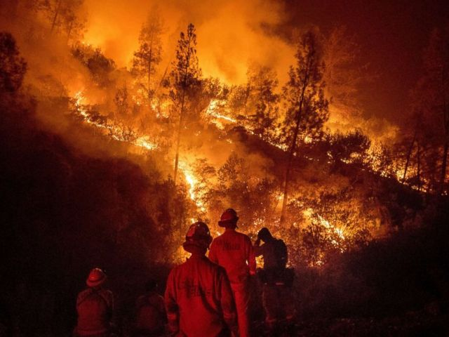 PHOTO: Firefighters monitor a backfire while battling the Ranch Fire, part of the Mendocino complex fire, Aug. 7, 2018, near Ladoga, Calif.