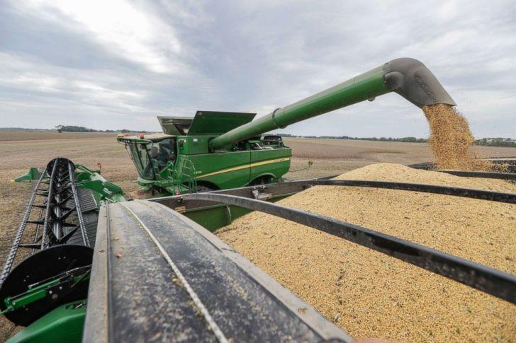 قام مايك ستاركي بإفراغ فول الصويا من محصوله أثناء حصاد محاصيله في مدينة براونسبرج بولاية إنديانا يوم الجمعة 21 سبتمبر 2018.