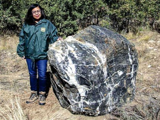 PHOTO: Wizard Rock, a boulder weighing 1 ton that disappeared from Prescott National Forest in Arizona last month, has magically reappeared, according to forest officials.