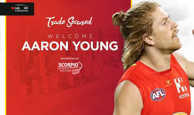 Image result for aaron young gold coast