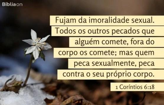 Fujam da imoralidade sexual. Todos os outros pecados que alguém comete, fora do corpo os comete; mas quem peca sexualmente, peca contra o seu próprio corpo. 1 Coríntios 6:18