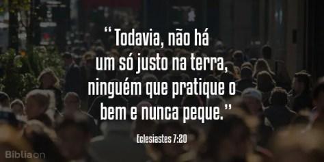 Todavia, não há um só justo na terra, ninguém que pratique o bem e nunca peque. Eclesiastes 7:20