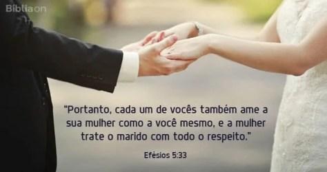 Portanto, cada um de vocês também ame a sua mulher como a você mesmo, e a mulher trate o marido com todo o respeito. Efésios 5:33