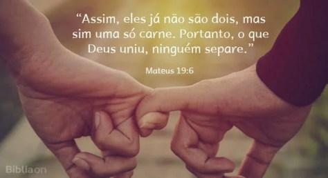Assim, eles já não são dois, mas sim uma só carne. Portanto, o que Deus uniu, ninguém separe. Mateus 19:6