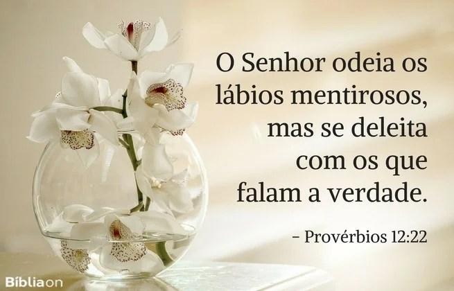 O Senhor odeia os lábios mentirosos, mas se deleita com os que falam a verdade. Provérbios 12:22