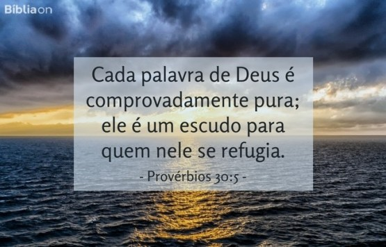 Cada palavra de Deus é comprovadamente pura; ele é um escudo para quem nele se refugia.Provérbios 30:5