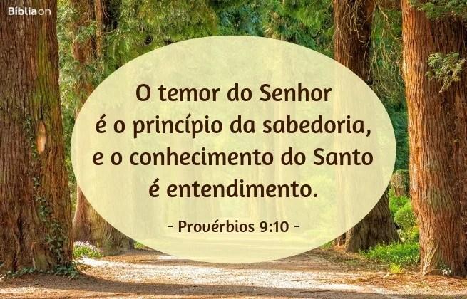O temor do Senhor é o princípio da sabedoria, e o conhecimento do Santo é entendimento.Provérbios 9:10