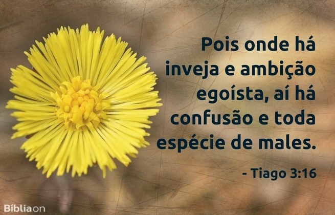 Pois onde há inveja e ambição egoísta, aí há confusão e toda espécie de males. Tiago 3:16