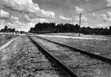 Ze stacji kolejowej w Treblince do obozu zagłady prowadziła bocznica kolejowa.