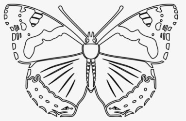 Free Butterfly Outline Clip Art with No Background ClipartKey