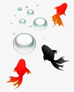 Ikan Hias Png : Gambar, Transparent, Clipart, ClipartKey