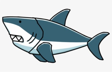 Whale Clipart Getdrawings Cartoon Transparent Background Shark Free Transparent Clipart ClipartKey