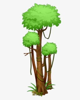 How To Draw A Rainforest Tree : rainforest, Drawn, Jungle, Drawing, Transparent, Clipart, ClipartKey