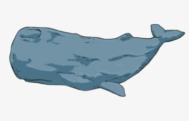 Free Blue Whale Clip Art with No Background ClipartKey
