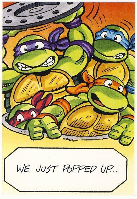 Teenage Mutant Ninja Turtles Birthday Greeting Card TMNT
