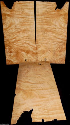 White Oak Burl Veneer