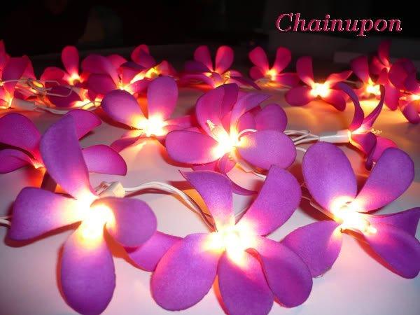 35 Purple Frangipani String Party,patio,wedding Lights