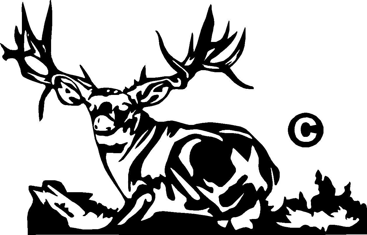 Mule Deer Vinyl Decal Sticker 7 Wide