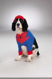 High Quality Spiderman Dog Pet Costume