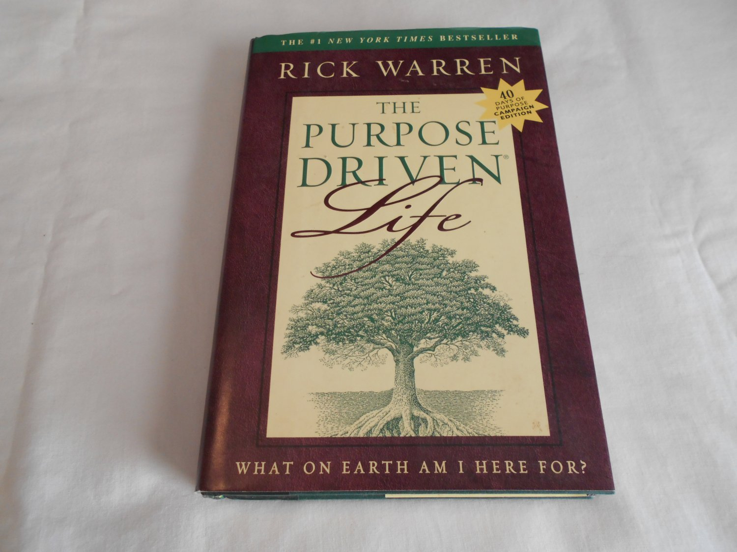 The Purpose Driven Life What On Earth Am I Here For By
