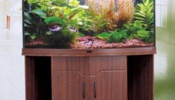 100 gallon fish tank and stand - FS: 100 Gallon aquarium