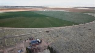 In this part of Arizona, large-scale farms have control over the water. These wells pump tremendous amounts for producing alfalfa, a plant used for animal feed.