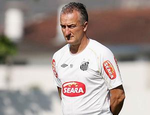 Dorival Junior no treino do Santos
