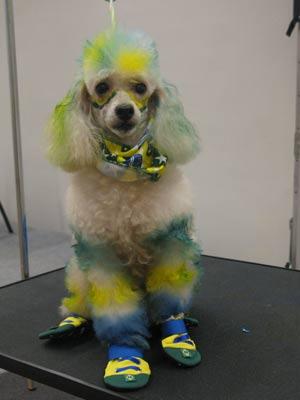 Cães pintados para a Copa 2